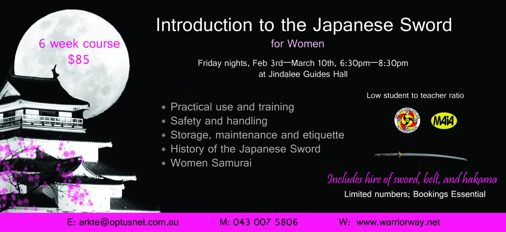 Japanese Sword classes, Aikijutsu Classes, and Childrens' classes